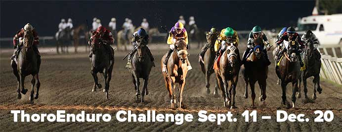 ThoroEduro Handicapping Challenge