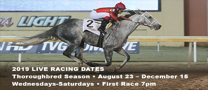 Remington Live Racing Starts August 23rd 2019
